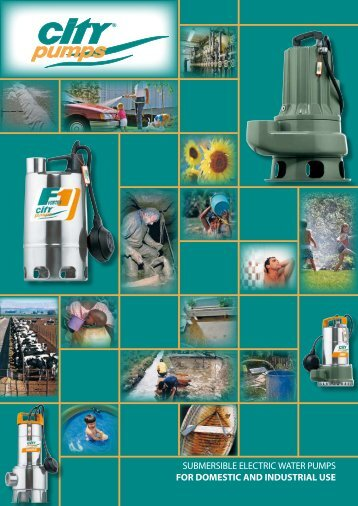 submersible electric water pumps for domestic and ... - citypumps