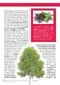 click qui - Farmaciasanfrancesco.net - Page 6
