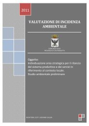 Relazione Screening VI - Comune di Gela