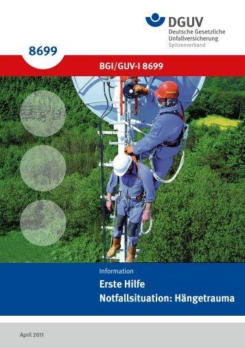 BGI/GUV-I 8699 - Deutsche Gesetzliche Unfallversicherung
