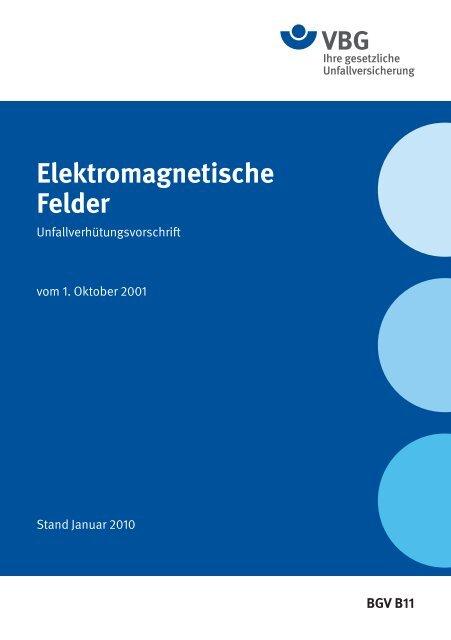 Elektromagnetische Felder - VBG