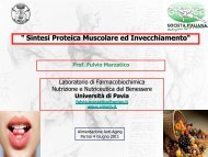 la sintesi proteica nel processo di invecchiamento - Accademia del ...