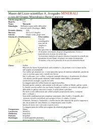 Marcasite.Solfuri.prov. Reggio Emilia scheda n 87.pdf - Autistici