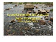 Le analisi chimiche dell'acqua del fiume Padrongianus (PDF - 478 KB)