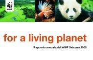 WWF GB 2004_05 i Inhalt - WWF Schweiz