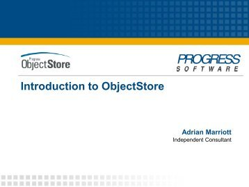 Introduction to ObjectStore - ODBMS