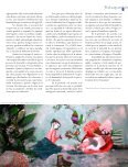 Búsquedas 5 - Eduardo Yentzen - Page 6