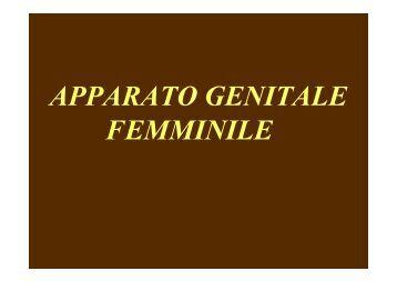 APPARATO GENITALE FEMMINILE - Unimed