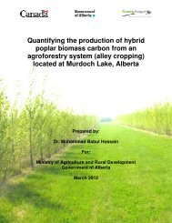 Quantifying the production of hybrid poplar biomass carbon from an ...