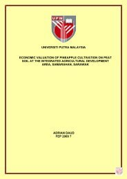 universiti putra malaysia economic valuation of pineapple cultivation ...