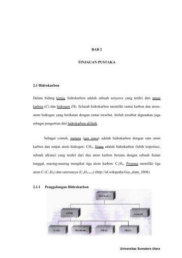 BAB 2 TINJAUAN PUSTAKA 2.1 Hidrokarbon Dalam bidang kimia ...
