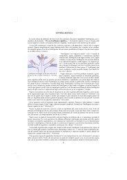 II parte (pag. da 82 a 155) - Istituto Comprensivo Bosco Chiesanuova