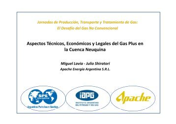 Aspectos Técnicos, Económicos y Legales del Gas Plus en la ...