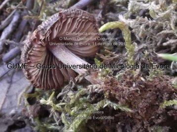 GUME – Grupo Universitário de Micologia de Évora - Universidade ...