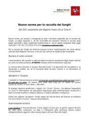 Nuove norme per la raccolta dei funghi - Comune di Torrita di Siena