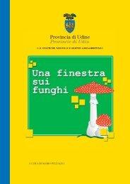 Funghi - dispensa - Provincia di Udine
