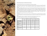 Strumenti pratici per la rivitalizzazione del suolo Per la ... - Matricultura