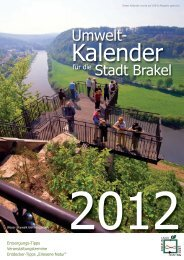 Download des Müllabfuhr-Kalenders - Riesel