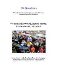 Bericht der BRK-Allianz - Der VdK