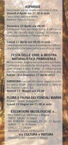 Fabrizio Fabrizi - Vivere con Gioia - Page 7