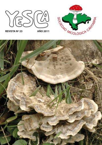 """""""YESCA"""" - Revista de Micología nº 23 - Sociedad Micológica Cántabra"""