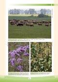 Manažmentové modely pre údržbu, ochranu a obnovu biotopov - Page 5