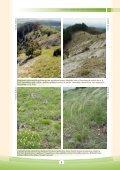Manažmentové modely pre údržbu, ochranu a obnovu biotopov - Page 7