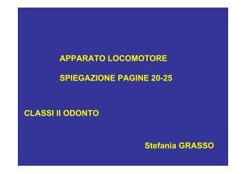 APPARATO LOCOMOTORE SPIEGAZIONE PAGINE 20-25 Stefania ...