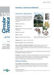 Download documento formato PDF - Embrapa Florestas