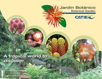 A tropical world to discover A tropical world to discover