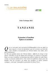 TANZANIE - La Balaguère