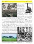 Die Schieferkohlen von Dürnten - SGHB - Seite 2