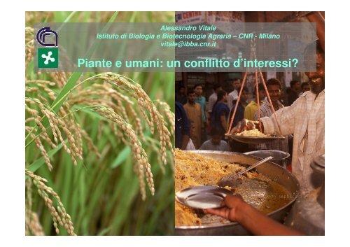 Alessandro Vitale, CNR-Istituto di Biologia e Biotecnologia Agraria