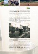 il Sapore della Tradizione - Caseificio MASI - Page 2