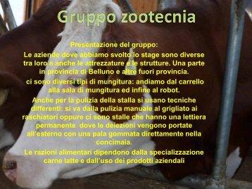 Gruppo zootecnico