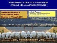 Evoluzione del management aziendale in rapporto ... - ARA Sardegna