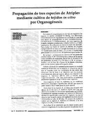 Propagación de tres especies de Atriplex - Organización ...