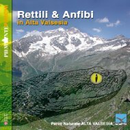 la Valsesia - Marco Bellavita