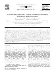 Molecular phylogeny of the critically endangered Indochinese box ...