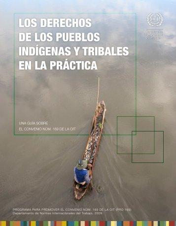 Los Derechos de los Pueblos Indígenas y Tribales en la Práctica