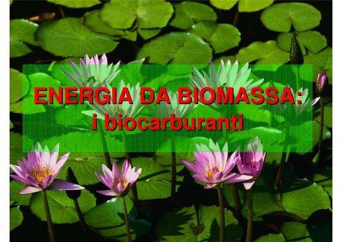 ENERGIA DA BIOMASSA: i biocarburanti