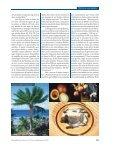 La incipiente ciencia de La bmaa - Page 4