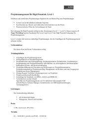 Projektmanagement für High Potentials, Level 1