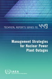 Management strategies for nuclear power plant outages - Sibdi
