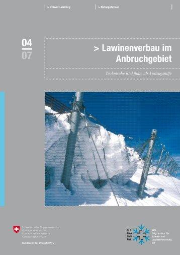 Technische Richtlinie: Lawinenverbau im Anbruchgebiet - SLF