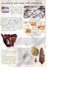 Dalla selce ai metalli: l'uso dei materiali nella ... - Archeomarche - Page 6