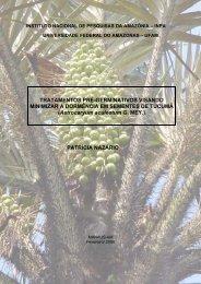 Astrocaryum aculeatum G. MEY. - Biblioteca Digital de Teses e ...