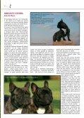 BOULEDOGUE FRANCESE - di Fosso Corno - Page 2