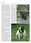 BOULEDOGUE FRANCESE - di Fosso Corno - Page 4