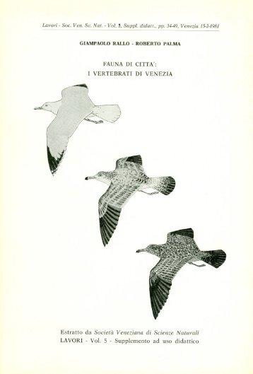 Rallo G. & Palma R., 1981 - Fauna di citta - Ornitologia Veneziana
